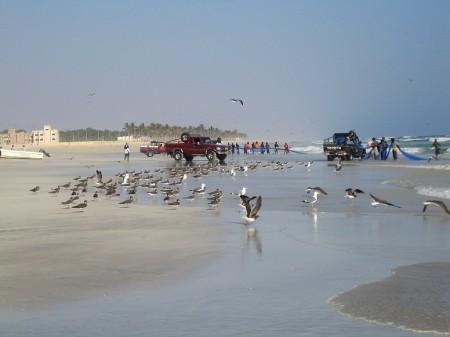 44 Strand von Salalah